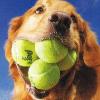 Аватар пользователя Tennismayker
