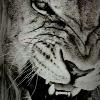 Аватар пользователя Oblomi4