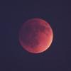 Аватар пользователя Red.Moon