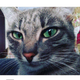 Аватар пользователя fembeer