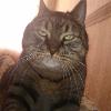 Аватар пользователя lentyai1994