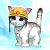 Аватар пользователя broneko