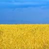 Аватар пользователя LGuNSKiy