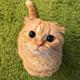 Аватар пользователя Theomars46