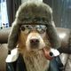 Аватар пользователя JohnDoeIII