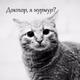 Аватар пользователя MrD125