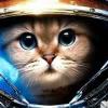 Аватар пользователя KAT9I