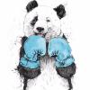 Аватар пользователя PandaPlush