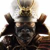 Аватар пользователя YamatoSan