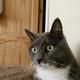 Аватар пользователя SBorFilka