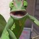Аватар пользователя Tyke