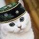Аватар пользователя almazych