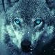 Аватар пользователя AndreiKa007