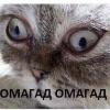 Аватар пользователя MrDrMalloy