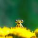 Аватар пользователя Babokach