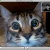 Аватар пользователя volnuha
