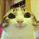 Аватар пользователя ya.dynamit