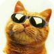 Аватар пользователя vadis500