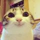 Аватар пользователя YIIITY