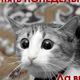 Аватар пользователя ser63