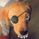 Аватар пользователя Zyboskal