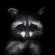 Аватар пользователя ShPikaChu