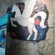Аватар пользователя LaVrushka18