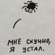 Аватар пользователя Pitersidr