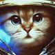 Аватар пользователя D3nn41K