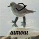 Аватар пользователя Shtoshik