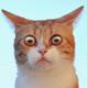 Аватар пользователя Mostnewman