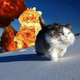 Аватар пользователя WizardW