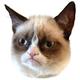 Аватар пользователя Shenmue
