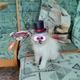 Аватар пользователя wowchik82