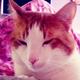Аватар пользователя Vokilret88