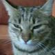 Аватар пользователя BetjIt