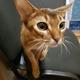 Аватар пользователя Naska94