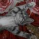Аватар пользователя Oksushka