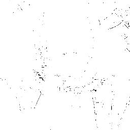 VANGANU