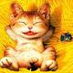 Аватар пользователя magnetx