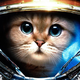 Аватар пользователя UkaUka