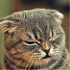 Аватар пользователя MenTol98