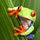 Аватар пользователя sestraKerry77