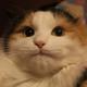 Аватар пользователя mainka