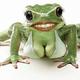 Аватар пользователя Lemurtujur