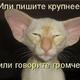 Аватар пользователя TimkaBotinka
