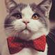 Аватар пользователя myp3uk13