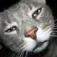 Аватар пользователя Denis63192