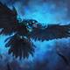 Аватар пользователя dark.crow