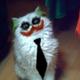 Аватар пользователя St.Poxyi